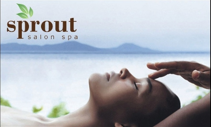 Sprout Salon Spa - Balboa: $89 for Caribbean-Therapy Body Treatment, Shampoo, Style, and Hair Damage Remedy at Sprout Salon Spa ($175 Value)