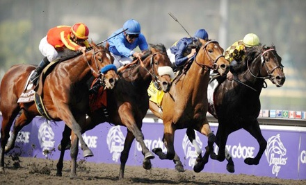 Breeders' Cup World Championships at Churchill Downs on Fri., Nov. 4: Sections 123-125 Seating - Breeders' Cup World Championships in Louisville