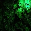 Up to 50% Off Haunted House at Ghoulie Manor