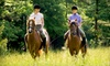 Up to 60% Off Horseback-Riding Lessons in Mendon