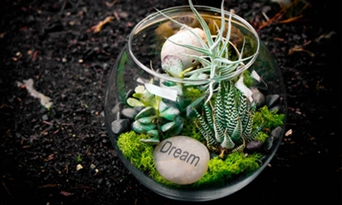 Goose Hollow Gardens - Portland: $25 for $50 Worth of In-store or Delivered Flowers and Plants at Goose Hollow Gardens