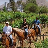 Up to 59% Off Horse-Riding Package in Temecula