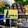 Half Off at Luma