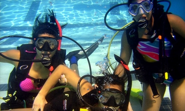 Eco Dive Center - Clarkdale: $89 for a Discover Snorkeling Lesson, Plus Take-Home Snorkel and Mask at Eco Dive Center