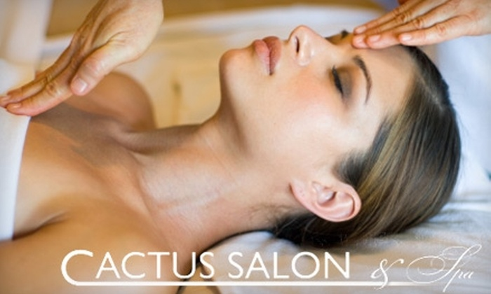 Cactus Salon & Day Spa - Multiple Locations: $37 for a Facial, Massage, or Mini-Facial and Mini-Massage Combo at Cactus Salon and Spa (Up to $90 Value). Choose From 17 Locations.