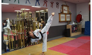 Total Impact Martial Arts: 10 Martial Arts Classes at Total Impact martial arts (87% Off)