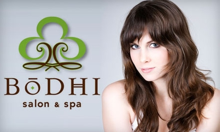 Bodhi Salon & Spa - Downtown Springfield: $15 for Haircut and Blow Dry at Bodhi Salon and Spa ($30 Value)