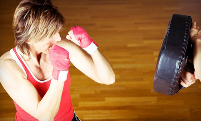 Ann Arbor College of Martial Arts - Bryant Pattengill East: 10 or 15 Fitness Classes at Ann Arbor College of Martial Arts (Up to 76% Off)