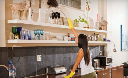 2 Hours of Housecleaning Services (a $120 value) - 2 Ladies and a Mop in