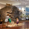 EcoTarium – Up to 58% Off Outing