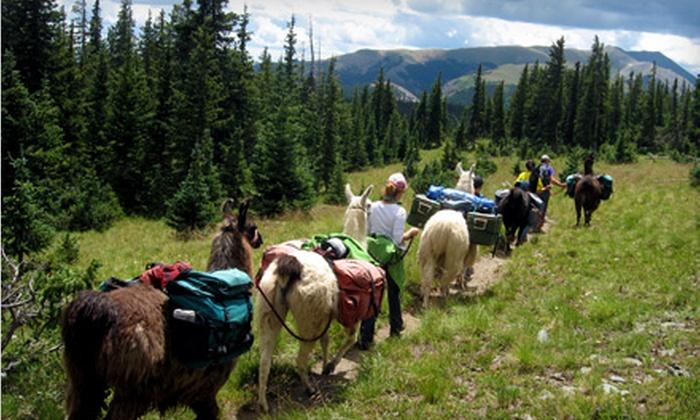 Wild Earth Llama Adventures - Questa: Wild Earth Llama Adventures Adult or Child Admission to Llama Trekking and Lunch from Wild Earth Llama Adventures in Taos