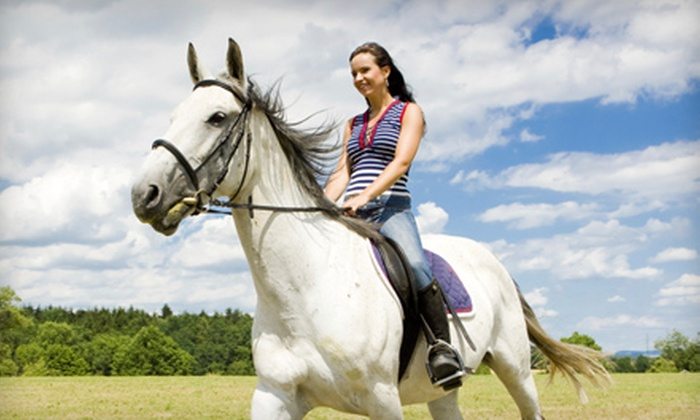 49 Rivers Ranch - Regina: $20 for a One-Hour Horseback Riding Lesson at 49 Rivers Ranch (Up to $40 Value)