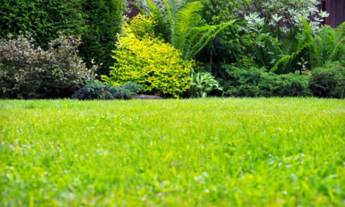 Due' Design & Services - Little Rock: Four or Eight Weeks of Lawn-Care Services from Due' Design & Services (Up to 65% Off)