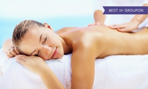 Steamboat Hot Springs Healing Center & Spa: Massages and Mineral Baths at Steamboat Hot Springs Healing Center & Spa (Up to 44% Off). Six Options Available.