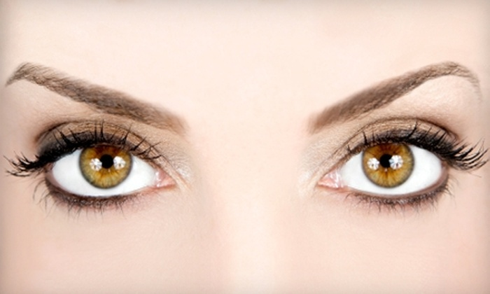 The Brow Studio - Windom: $15 for an Eyebrow Wax at The Brow Studio ($30 Value)