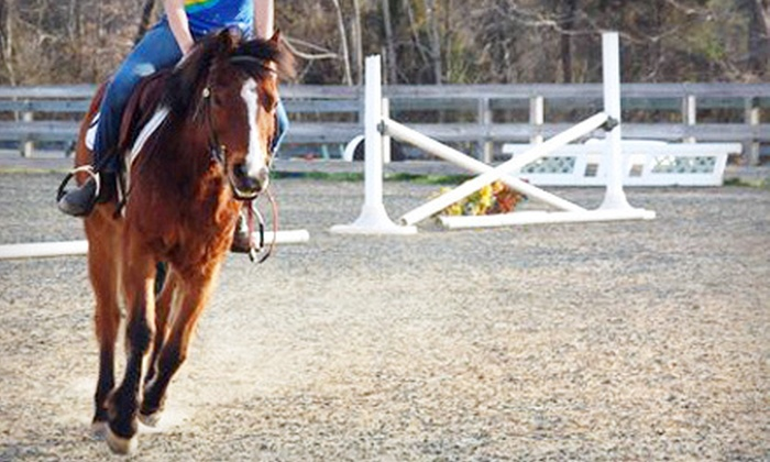 Mesa Vista Therapeutics - 1: One or Three 60-Minute Horseback-Riding Lessons or Birthday Party at Mesa Vista Therapeutics in Powhatan (Up to 61% Off)