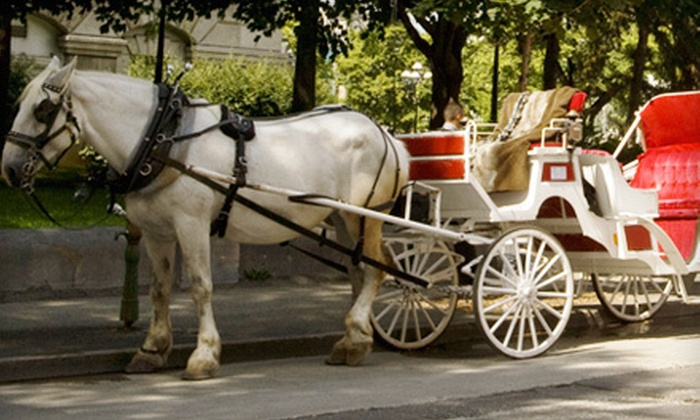 Brookdale Farms Premier Carriages - Downtown St. Louis: Half-Hour or One-Hour Downtown Carriage Ride for Up to Four from Brookdale Farms Premier Carriages (Up to 55% Off)