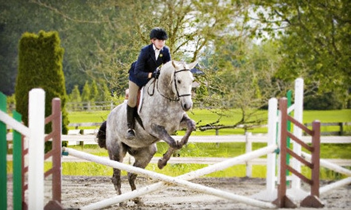 A&T Equestrian - South Surrey: One-Hour Horseback-Riding Lesson for One, Two, or Four at A&T Equestrian in Surrey