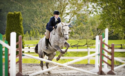 1-Hour Introductory Horseback Riding Lesson (a $50 value) - A&T Equestrian in Surrey