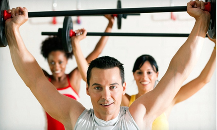 Hybrid Fitness - Virginia: 12 Strength and Conditioning Classes for One or Two People at Hybrid Fitness (Up to 61% Off)