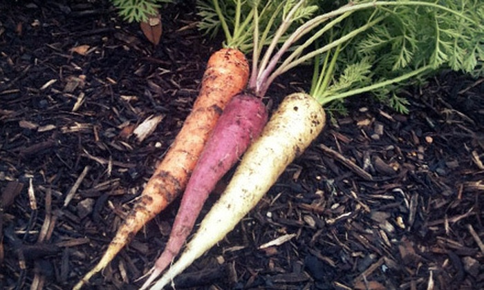 Edible Earth Resources - Downtown: $25 for 60-Minute Home-Garden Consultation from Edible Earth Resources ($50 Value)