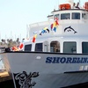 Up to 51% Off a Narrated Harbor Tour and Nature Cruise