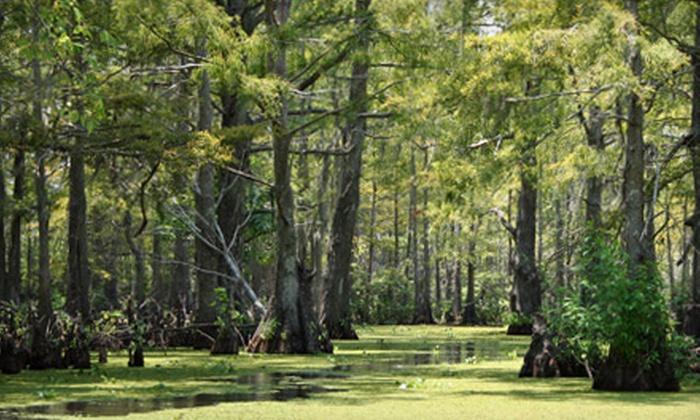Cajun Pride Tours - LaPlace: $11 for a Swamp Boat Tour with Cajun Pride Tours in LaPlace (Up to $24 Value)