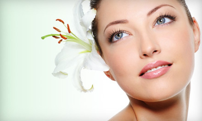 European Flair Hair & Spa - Borden Farm - Stewart Farm - Parkwood Hills - Fisher Glen: One or Three Microdermabrasions with Skin-Scrubber Treatments at European Flair Hair & Spa in Nepean (Up to 63% Off)