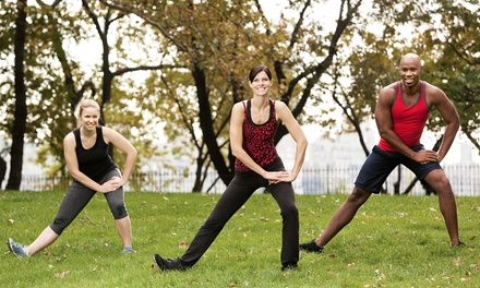 10, 20, or One Month of Unlimited Outdoor Group-Fitness Classes at Chestnut Performance Training (Up to 78% Off)