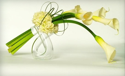 $50 Groupon to Y-Knotflowers.com - Y-Knotflowers.com in