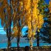 Spacious Suites in South Lake Tahoe