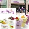 Half Off Frozen Treats at FreshBerry
