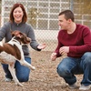 Up to 84% Off Pet Adoption at Arizona Humane Society