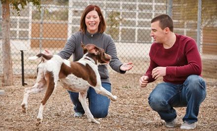 Full Adoption Fees for One Dog or Critter - Arizona Humane Society in Phoenix