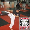 Tiger Schulmann's MMA and Kickboxing  - Multiple Locations: $10 for Kids' Two-Class Trial and Free Training Gloves at Tiger Schulmann's MMA and Kickboxing ($19.95 Value)
