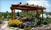 Fossil Creek Nursery - Fort Collins: $20 for $40 Worth of Plants and Garden Supplies at Fossil Creek Nursery in Fort Collins