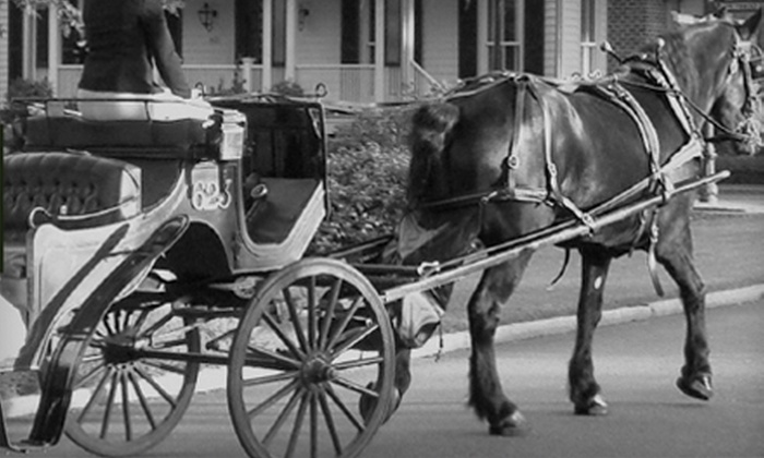Carriage Tours of Savannah - Yamacraw Village: $10 for a Ghost or History Carriage Tour (Up to $20 Value) or $60 for Private Tour ($125 Value) from Carriage Tours of Savannah
