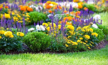Green Meadow Nursery and Hardware - Green Meadow Nursery and Hardware in Camarillo