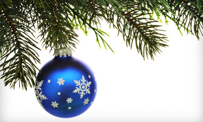 A Christmas Shoppe - Rice Lake Heights: $25 for $50 Worth of Christmas Decorations at Revak Nursery's A Christmas Shoppe in Lakeville