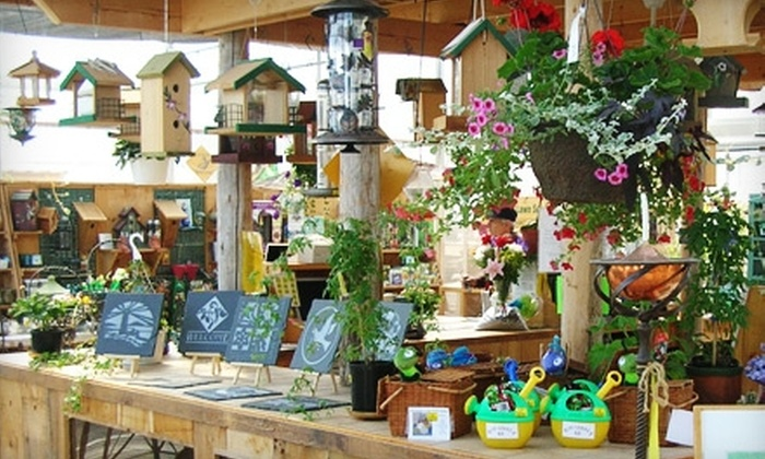 Hasselman Landscaping & Garden Centre - Ridgeway: $25 for $50 Worth of Garden Supplies at Hasselman Landscaping & Garden Centre