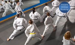 Sochin Shotokan Karate - Pitt St: Unlimited Karate Classes for One ($19), Two ($35) or Three Months ($55) at Sochin Shotokan Karate (Up to $360 Value)