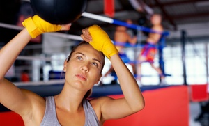 Hard Training Club: 5 or 10 Boxing Lessons at Hard Training Club (Up to 70% Off)