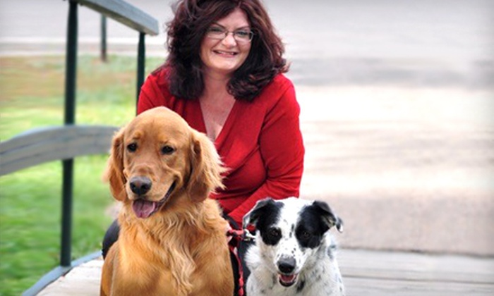 Megan Riley - Multiple Locations: $45 for a One-Hour Reading from Local Psychic, Medium, and Animal Communicator Megan Riley ($125 Value)