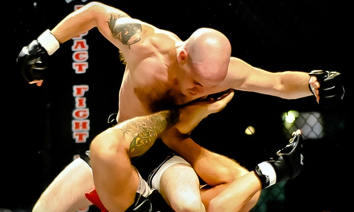 """Professional Mixed Martial Arts """"Bloody Valentine"""" - Auburn Hills: Two Tickets to Mixed Martial Arts Event at The Palace of Auburn Hills on February 18. Three Options Available."""