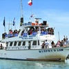 Up to 52% Off Dolphin-Watching Tour