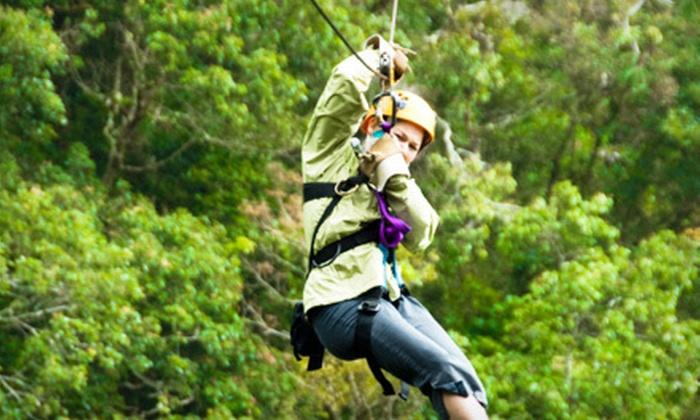 Hocking Peaks Adventure Park - Falls: Zipline Adventure Packages for One or Four at Hocking Peaks Adventure Park in Hocking Hills (Up to 52% Off)