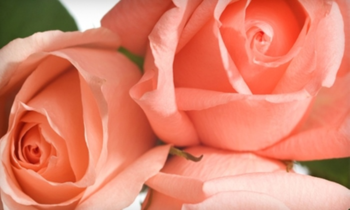 Floral Arts Florist - Lafayette: $20 for $40 Worth of Flowers and Plants at Floral Arts Florist in Lafayette