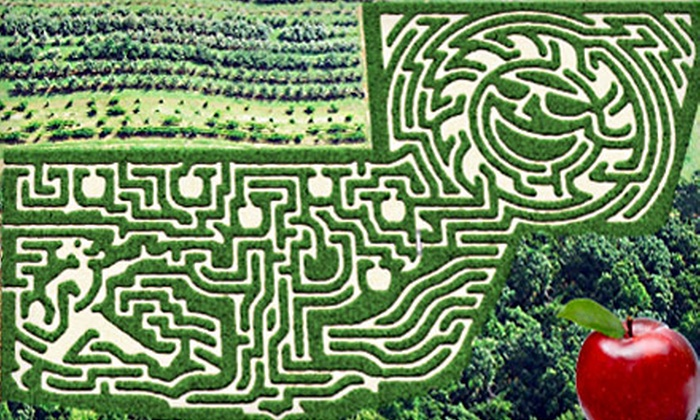 Jaemor Farms - Alto: $12 for Two All-Access Passes to Corn Maze and Autumnal Activities at Jaemor Farms in Alto ($24 Value)