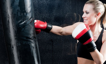 Up to 56% Off Kickboxing at 9 Round 30 Minute Kickboxing Columbia