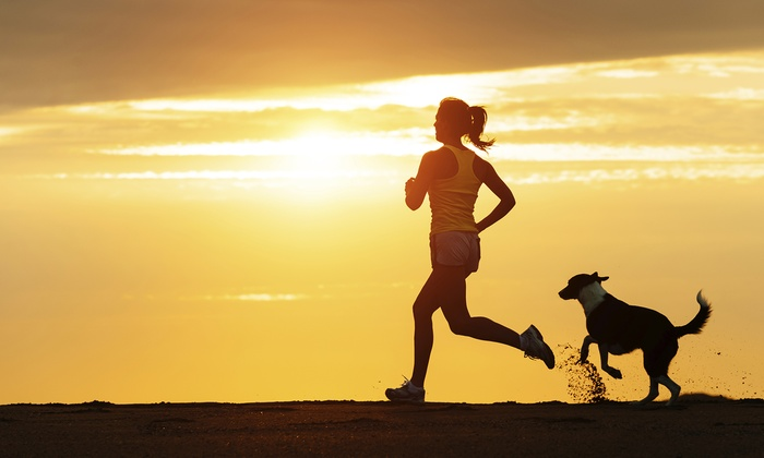 The Animal Foundation's Furry 5k - Sunset Park: The Animal Foundation's Furry 5K Run for One or Two Runners and Dogs on November 7 at 10 a.m.  (Up to 45% Off)
